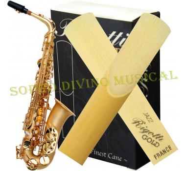 Palheta Rigotti Gold France Sax Alto Numerações