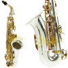 Sax Alto Corpo Prata Chaves Douradas ( Gold )  Hoyden HAS 25PG c/ Estojo Acessórios