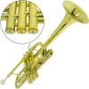 Trompete Do ( C ) Laqueado HS Musical Brasil Mod. HS1024L c/ Bag e Acessórios