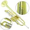 Trompete Sib Weril WNTR1-43 Laqueado Profissional Premium WEINGRILL & NIRSCHL c/ Bag e Acessórios